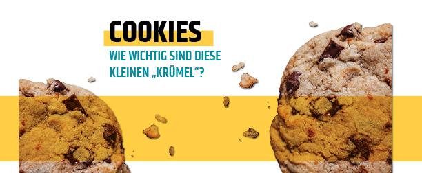 Cookies - Was so ein kleiner Krümel alles kann!